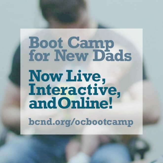 Boot Camp For New Dads - ON-LINE